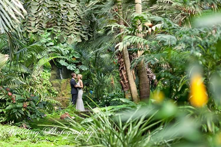 Hochzeitsfotograf Frankfurt Palmengarten – www.frankguder.de